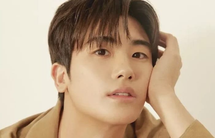 Park Hyung-sik to star in tvN drama Golden Hairpin